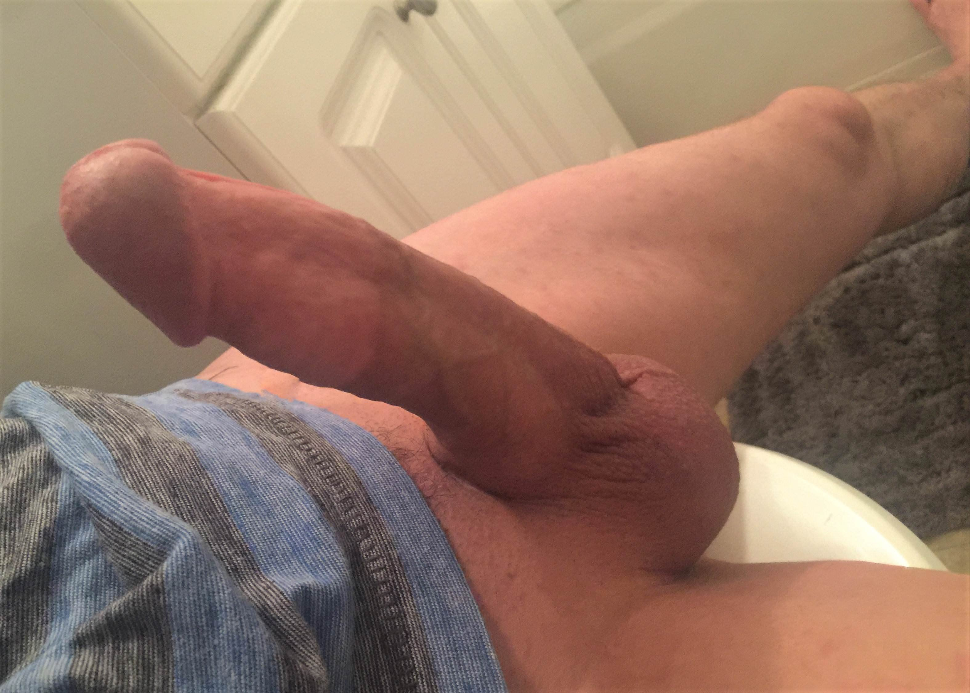 Horny penis pictures